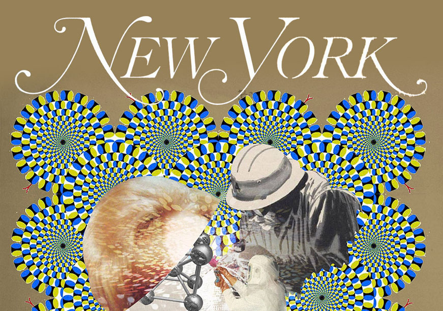 New York Magazine: Conspiracy!